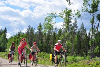 Bikers in Karelian countryside